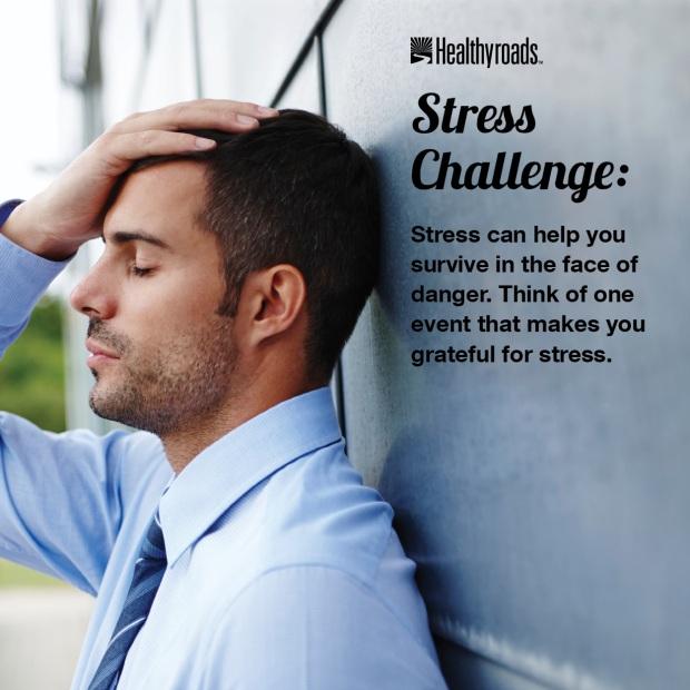 Stress Challenge48