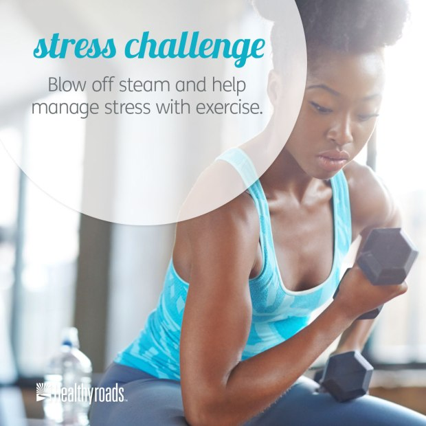 Dec-25-14_Stress-Challenge_HYR-Imagery