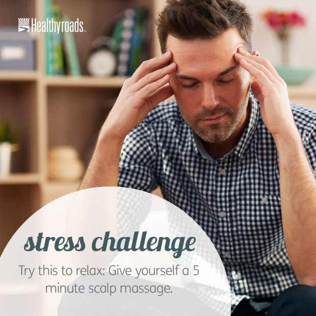 Feb-03-15_Stress-Challenge_HYR-Imagery