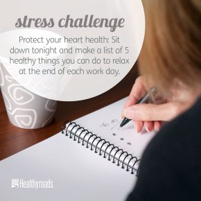 Feb-13-15_Stress-Challenge_HYR-Imagery