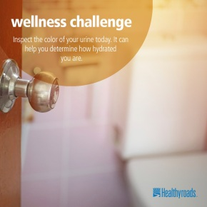 Aug12_wellness_challenge_HYR