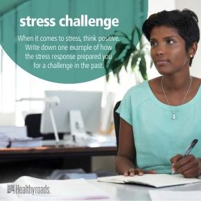 oct4_stress_challenge_hyr